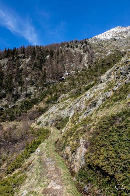 De Joli à Spilbielalpji le long du bisse de Ladusuon.