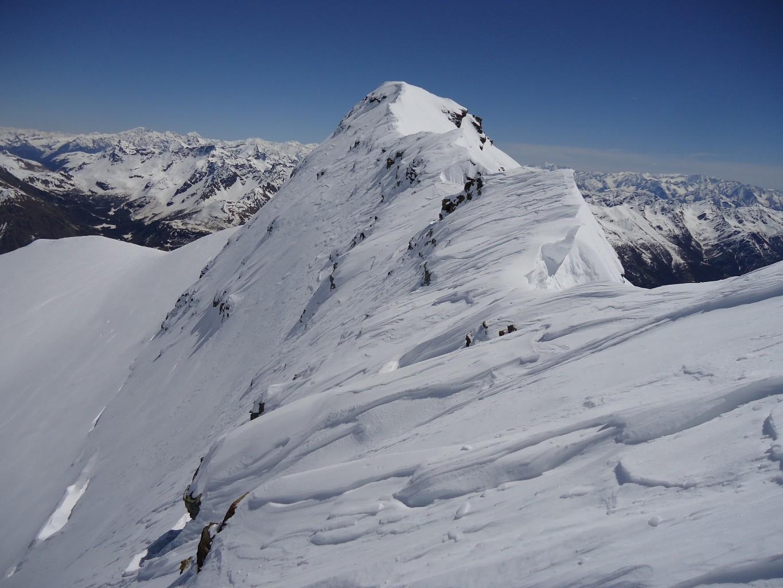 Piz Varuna: ancora sci ai piedi, verso il tratto finale della cresta