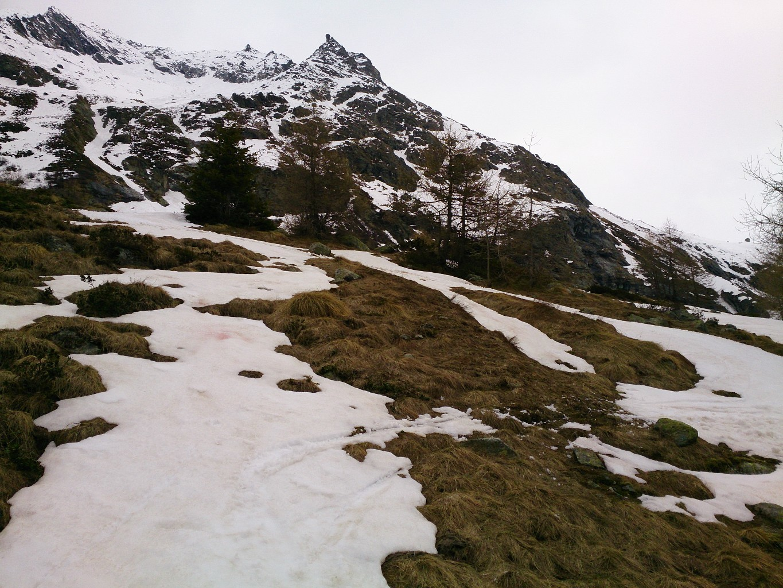 Ski névés à 1990m