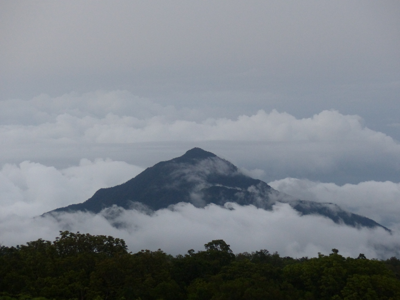 """Résultat de recherche d'images pour """"Mont Cameroun"""""""