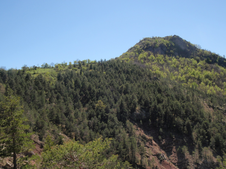 le sommet vu en montant sur Viel Esclangon