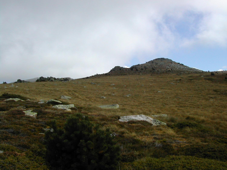 Plateau sommital sous le sommet