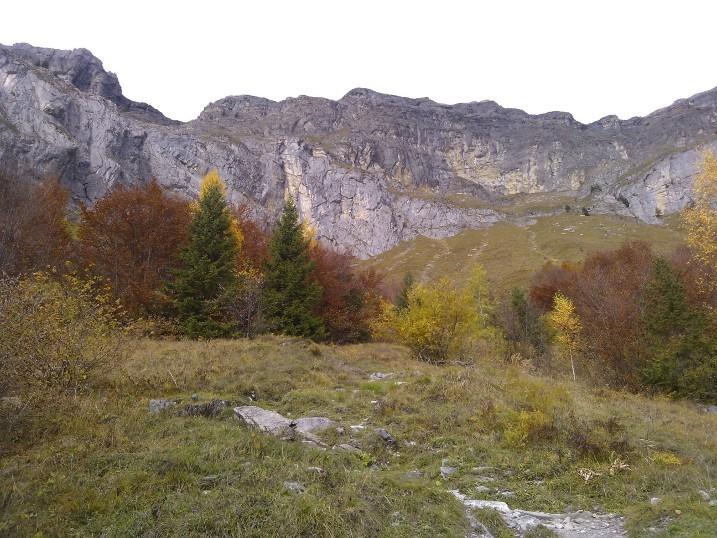 Retour dans l'alpage de Charbonnière