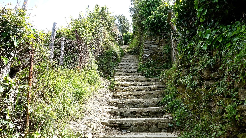 Toujours des escaliers