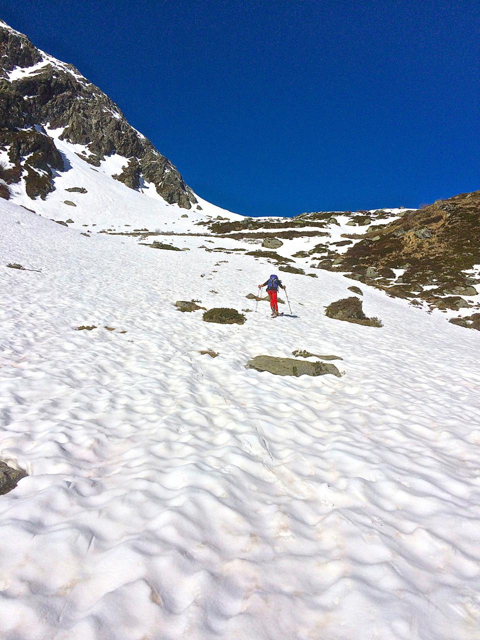 Slalom spécial entre fleurs, neige et marmottes