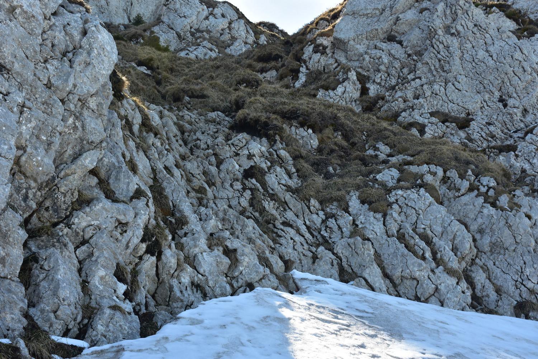 Grimpadeta de 5-7 metres (l'esglaó més alt)
