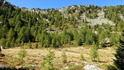 Mont Broillat par son versant vallon de Tillac