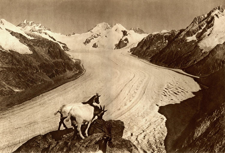 Glacier d'Aletsch, Jungfrau, Mönch, Eiger par Gyger