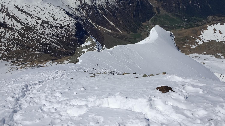 Depuis le sommet du Mont Pourri, vue sur l'épaule.