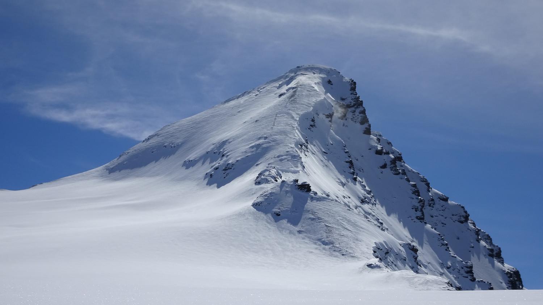 Le sommet. Soufflée sur l'arête et en haut, poudre dense dans la face.