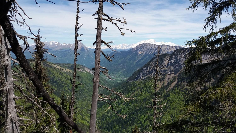 Mont-Blanc bien enneigé