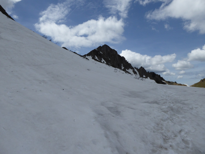 versant N du Buclon-Aig Verte, encore bien enneigé- Tour du Jalouvre