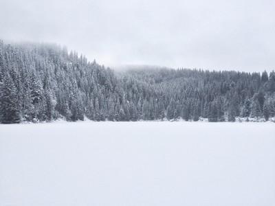 Lac vert, photographie Les Boucs en train