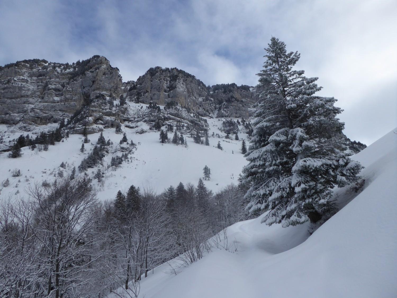 versant West , gdes Lanches -Tallamarche