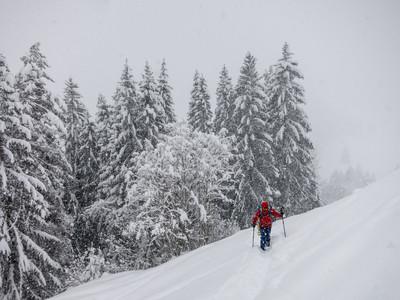 Montée sous la neige...